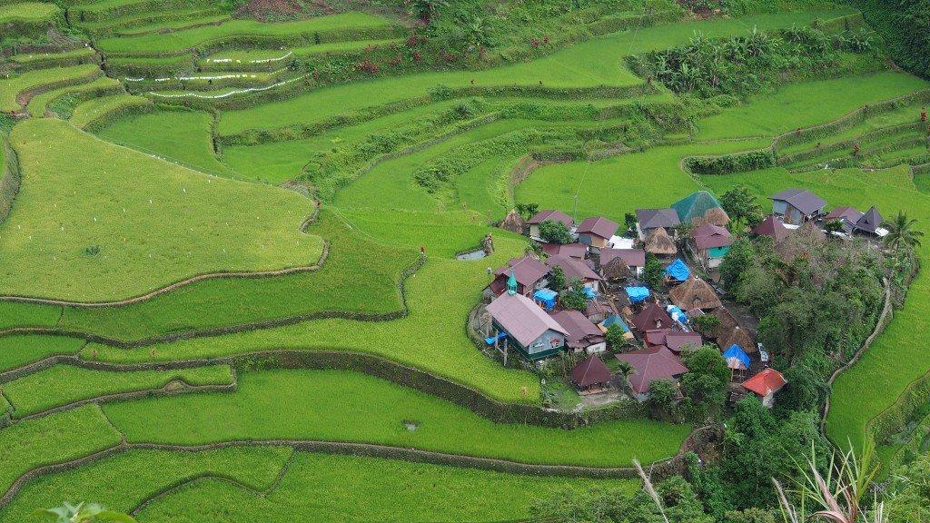 Banaue Rice terraces with small Ifugao Village