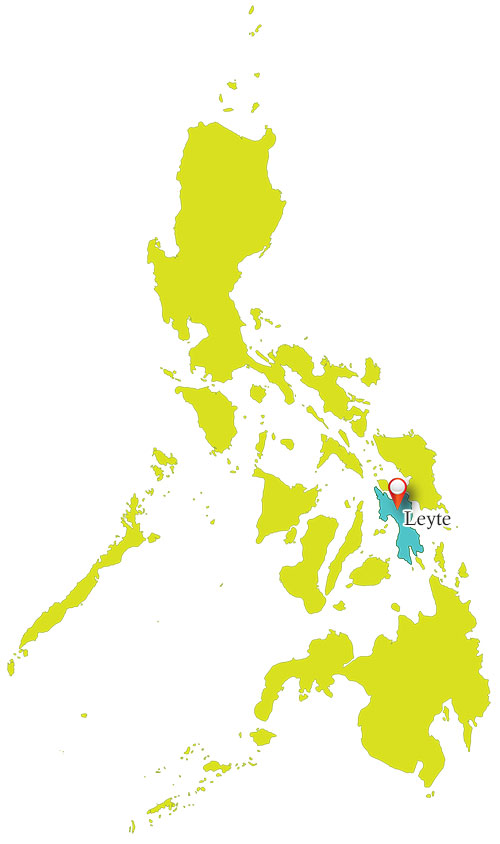 Leyte Ormoc Map