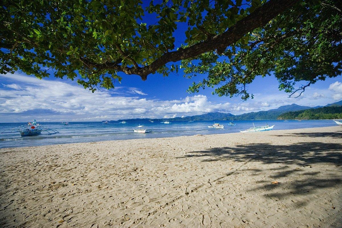 Beach of Palawan Philippines