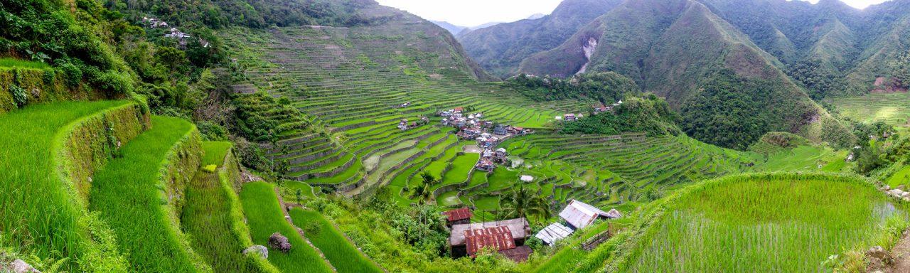 philippines_rice_fields