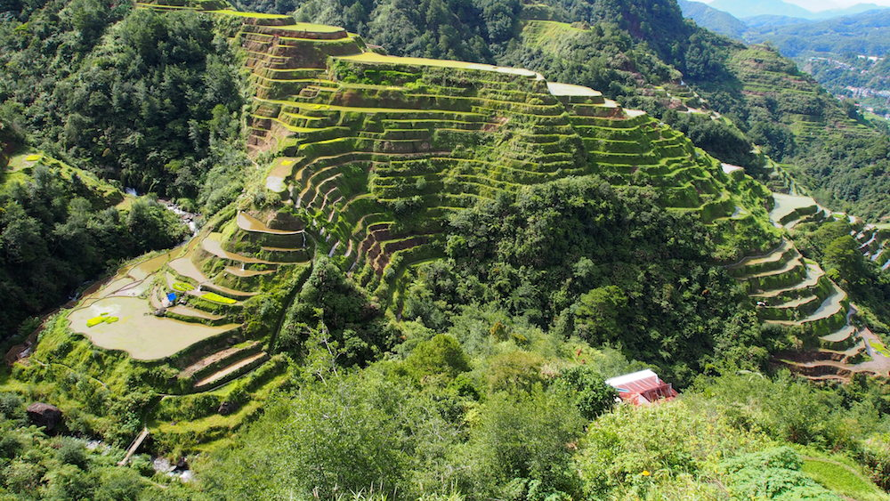 Banaue rice terraces on a beautiful day