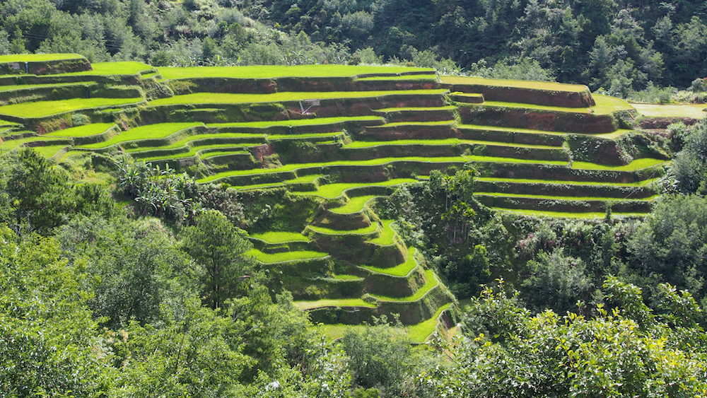 UNESCO Banaue rice terraces Philippines Highlights