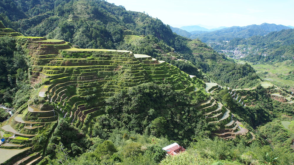 Banaue rice terraces with view on the town