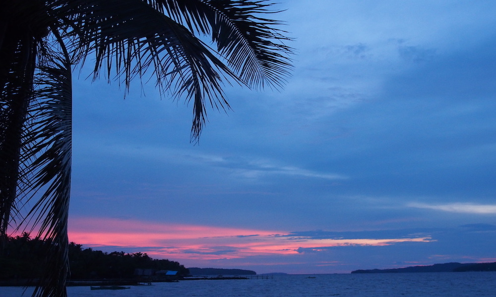 Dinagat sunset and palm tree