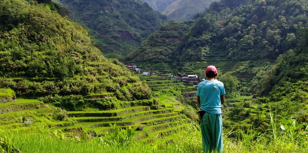 Man with rice terraces in the background
