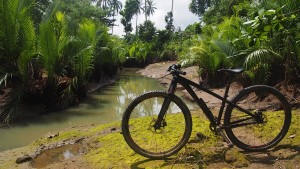 Bicycle trip Negros