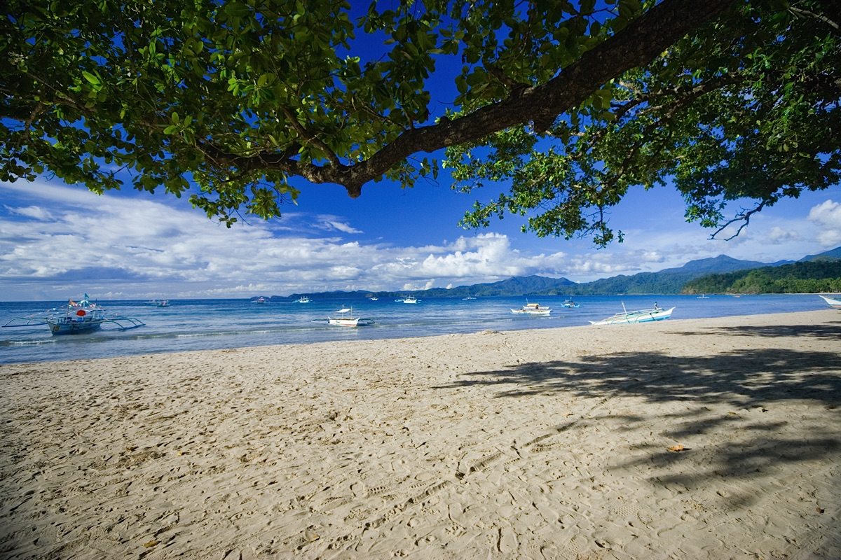 Beach of Palawan Philippines