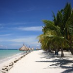Beach with huts and palm trees Palawan tours