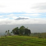 Mountains and rice terraces Panay